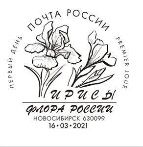 Irises listed in the Red Book of the Russian Federation